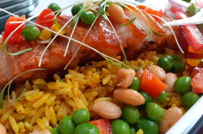 imagen plato de arroz con chancho peruano